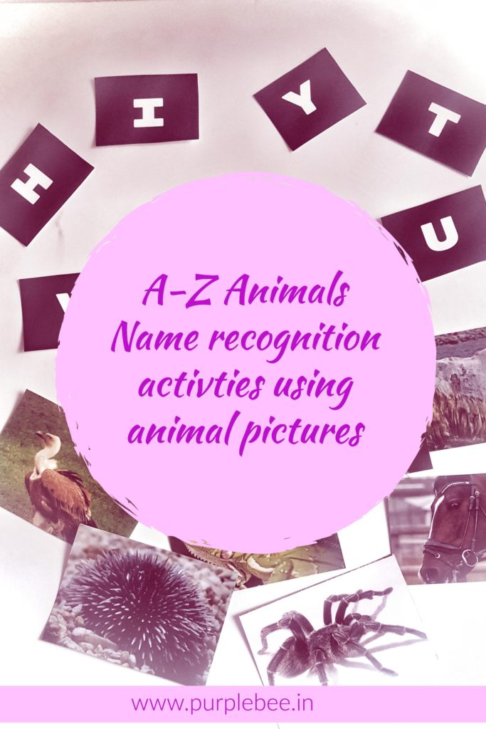 a-z animal names