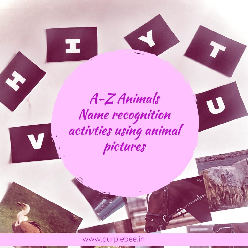 A-Z Animals – A name recognition activity using animal pictures (Free download)